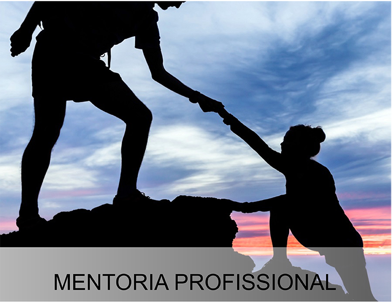 mentoria 222